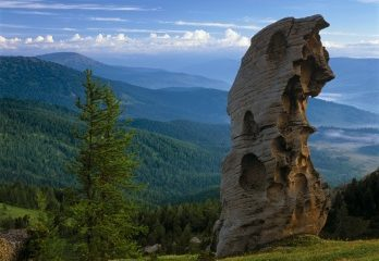 Wonder of Western Altai Nature Reserve